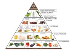 Food for life Primal wellness